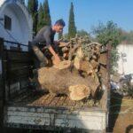 Handmade Olive Wood